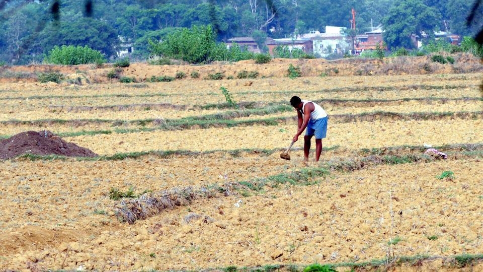 Monsoon weakens over Jharkhand, rain deficit at 60% so far