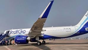 Delhi-bound IndiGo flight suffers bird hit in Ranchi, passengers safe