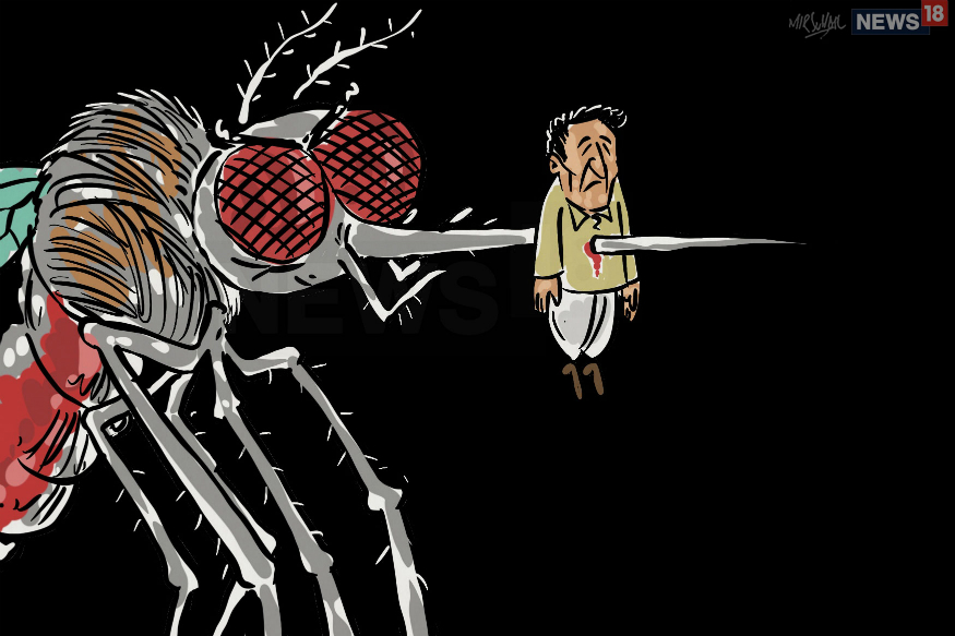125 Fresh Cases of Dengue Reported in Bihar in Last 2 Days, Total Count Mounts to 3,950.