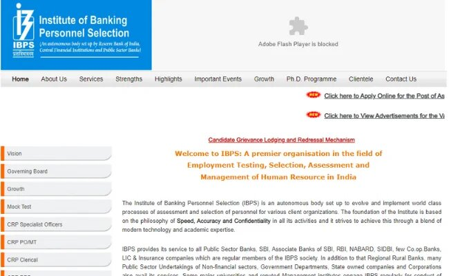 IBPS Clerk Scorecard Released at ibps.in, Check How to Download.