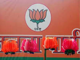 BJP team demands central agency probe into West Singhbhum killings
